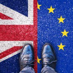 BrexIN for italian professionals